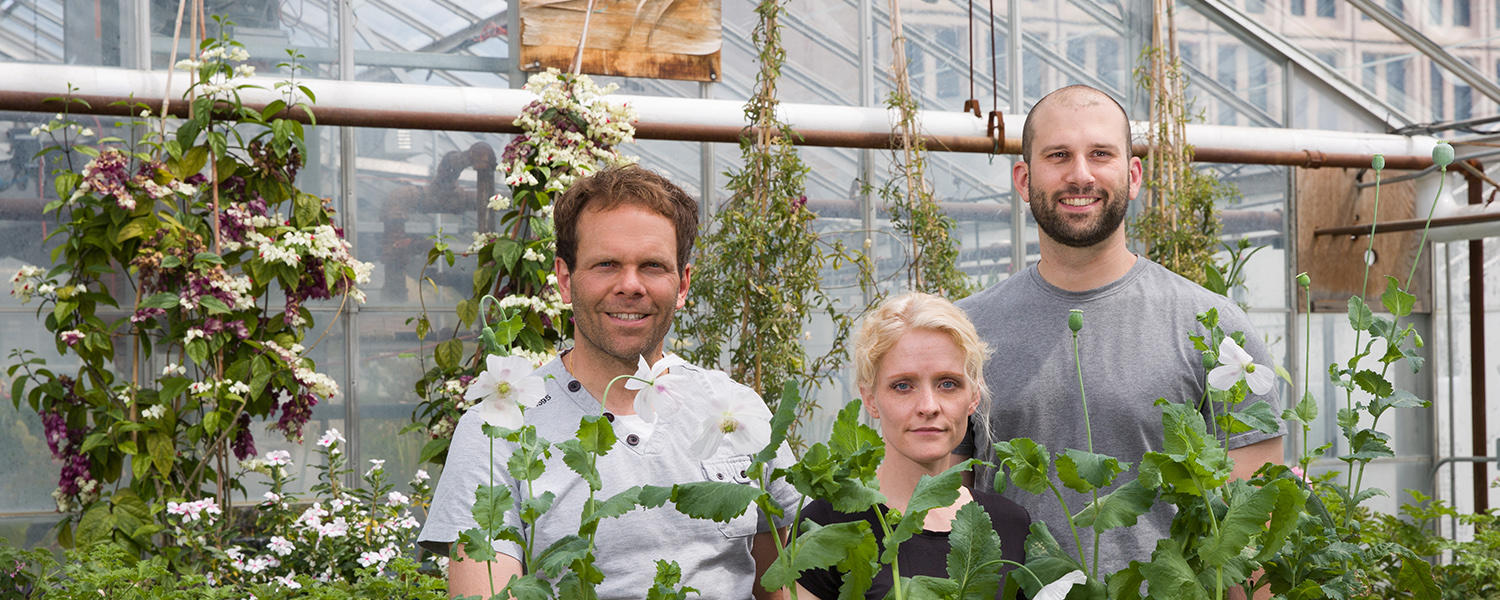 Three scientists stand in a greenhouse.
