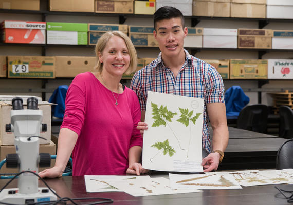 Professor Jana Vamosi and undergraduate student Gary Thai in the Herbarium
