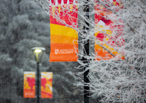 U Calgary banners covered in snow