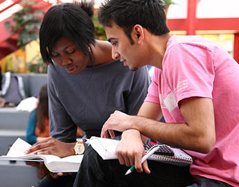 Two students study together.