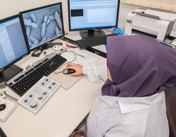 A female researcher works at computer.