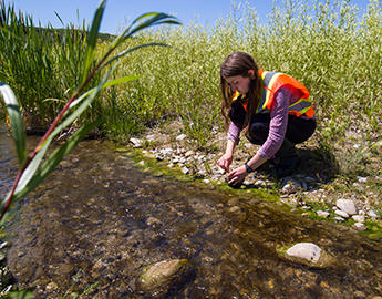A female student collects a water sample.