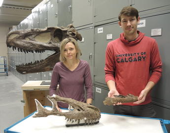 Dr. Darla Zelenitsky and Jared Voris pictured with Tyrannosaur bones at Royal Tyrrell Museum, AB.